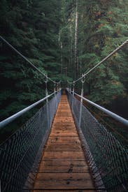 First Perspective Photography Of Hanging Bridge