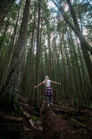 Back View Of A Woman Walking On A Log In The Forest